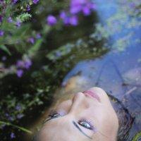 Цветочная река. :: Елена Прихожай