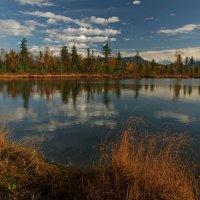 Попросило озеро у неба синеву... :: Александр Попов