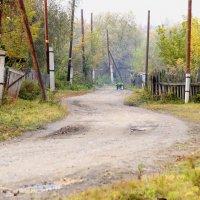 Исчезающие деревни. :: Наталья ***