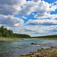 Река Енга-Ю, ЯНАО. :: Ирина Яромина