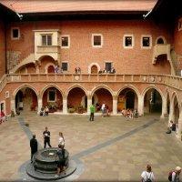 Ягеллонский университет :: Galina Belugina