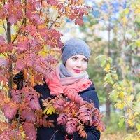 Рябиновая осень :: Светлана Ку