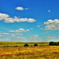 Русское поле... :: Сергей Дабаев