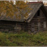 Старый дом. :: Марина Никулина