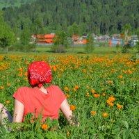 Оранж настроение :: elena oswald