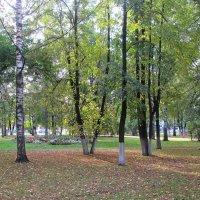 Осень в городе. :: Михаил Попов