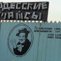 Одесские майсы!... :: Алекс Аро Аро