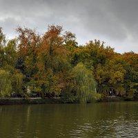 Осень2 :: Александр Смольников