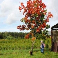 Девочка и осень :: Инна Малявина