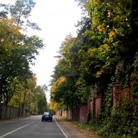 По дороге в осень :: Елена Семигина