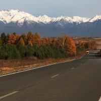 Последние километры по хорошей дороге... :: Александр Попов
