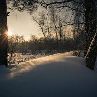 Зима и солнце :: Алексей Федотов
