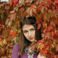 Осень золотая. :: Сергей Гутерман