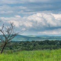 После дождя с грозой :: Игорь Сикорский