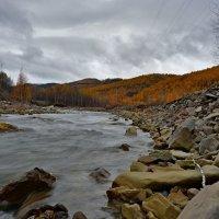 Уходящая осень :: Владимир Куликов