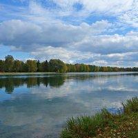 Осень настала. Хрупкие дни ... :: Galina Dzubina