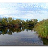 Река Усманка в октябре. :: Чария Зоя