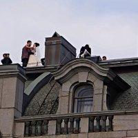 свадьба на крыше дома Зингера, Петербург :: александр