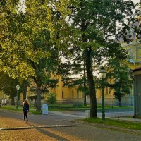Дивный свет заката.. :: Sergey Gordoff
