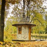 Осень в парке. :: Алексей Цветков
