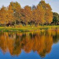 Золотые отражения... :: Sergey Gordoff
