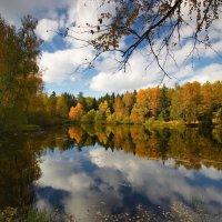А у нас осень!..а у Вас? :: Юрий Кольцов