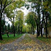 Городской пейзаж :: Галина Бобкина