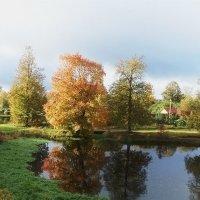Осень :: El Кондукова