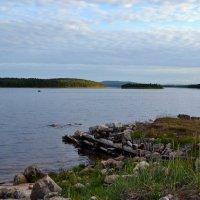 Лето на Белом море :: Ольга
