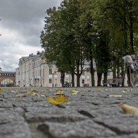 В городе осень. :: Ольга Лиманская