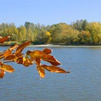 Осенний пейзаж. :: владимир