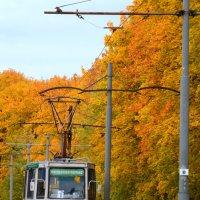 Осень в Коломне :: NICKIII Михаил Г.