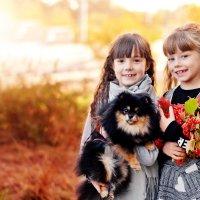 золотая осень :: Катерина Терновая
