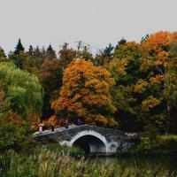 Осень :: Юлия Морец