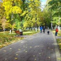 В старом парке царствовала  осень... :: Лара ***