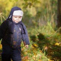 Осенние прогулки :: Alexander Moshkin