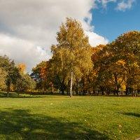 Осень в Царицыно :: Nyusha