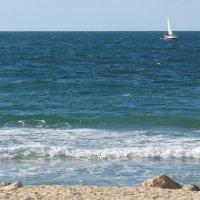 Утро на море :: Герович Лилия