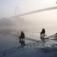 за туманами.... :: Виктория Колпакова
