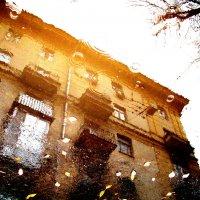 Отражение осени :: Inessa ---