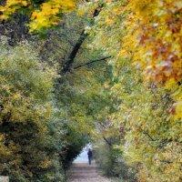 Уж небо осенью дышало, Уж реже солнышко блистало..... :: Алексей Михалев