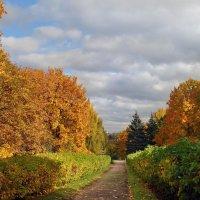 Осень в Коломенском 2 :: Nikanor