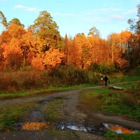 прогулки на закате :: Владимир Акилбаев