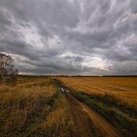 Осень, не унылая пора 5 :: Сергей Жуков