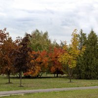 Осень кисточку достала, Всё вокруг разрисовала! На цвета сменила моду, Разукрасила Природу... :: Светлана