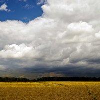 грозовые облака :: юрий иванов