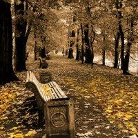 Осень в парке. :: vlad alferow
