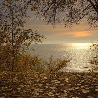 На закате осень :: оксана косатенко
