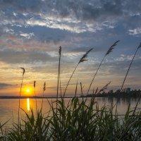Летний вечер на Нововоронежском водохранилище 2017 :: Юрий Клишин