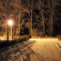 ночью :: андрей шилов
